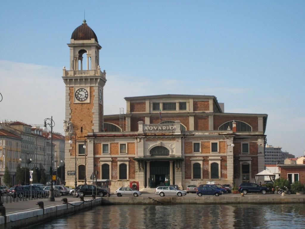 Trieste-Acquario_005