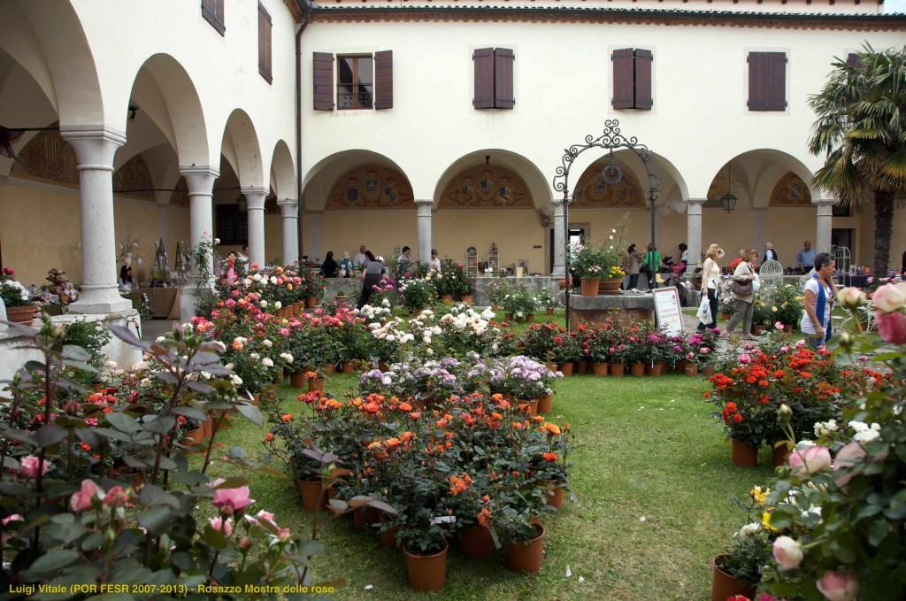 Rosazzo_Mostra delle rose_ph Luigi Vitale (POR FESR 2007-2013)- with ©